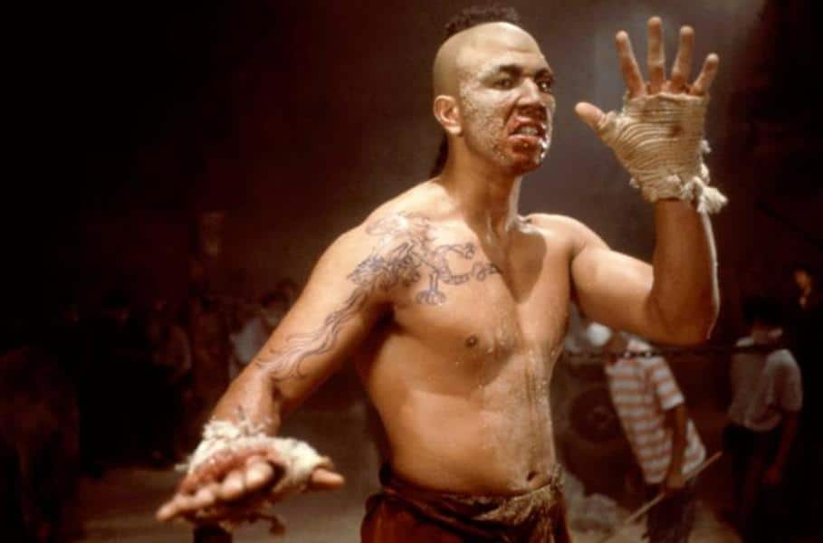 Karate Tiger 3 – Der Kickboxer