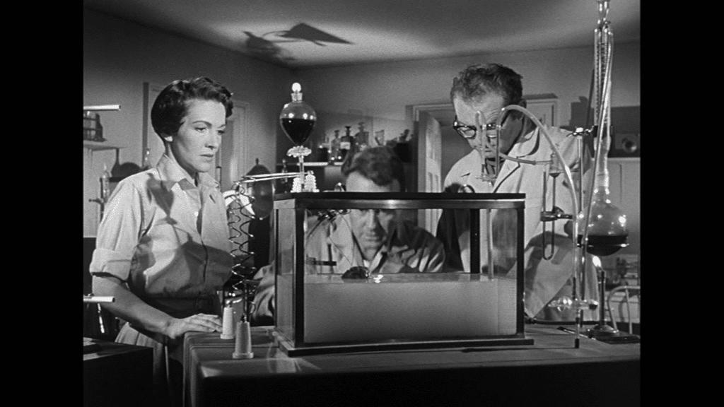 Nancy Reagan und Lew Ayres betrachten in ihrem Labor das Affenhirn im Bassin